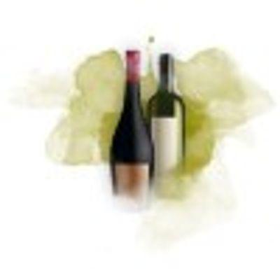 vinho-plano2--1-