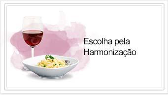 Vinho Harmonização