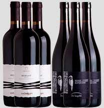 Clube do Vinho Plano 6
