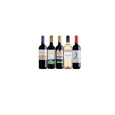 quinteto-bons-baratos-VinhoSite