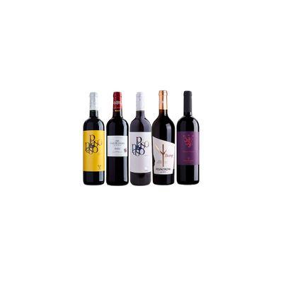 quinteto-40-vinhos-vinhositequinteto