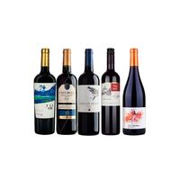 quinteto-50-vinhos